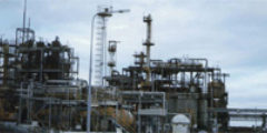 Baseline Assessment: Refinery Site